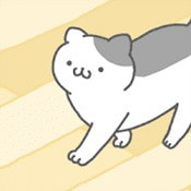 猫咪很可爱原版
