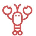 搜搜虾v1.0.6专业版